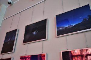 Выставку молодого художника представили на канале Тургеневской библиотеки. Фото: Анна Быкова